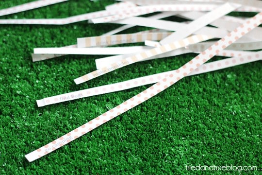 summerbucketsticks02sm