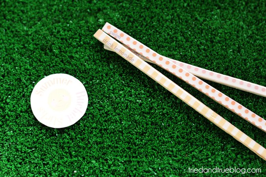 summerbucketsticks05sm