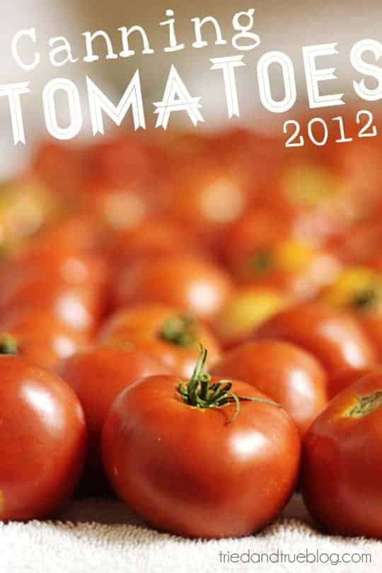 Canning Tomatoes 2012