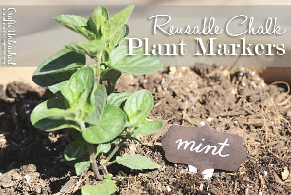 plantmReusable Chalk Plant Markers | Tried & True for Crafts Unleashedarkers05sm