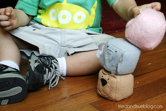 Kids love to play with the Animal Bean Bags from Tried & True