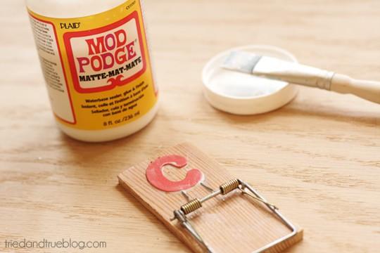 Mouse Trap Clips - Mod Podge