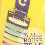 15 Minute Mouse Trap Clips