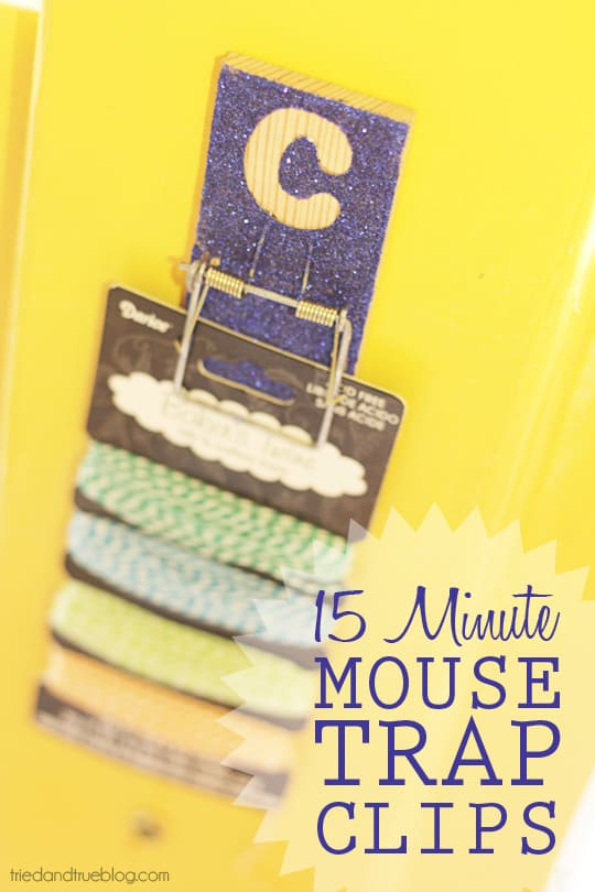 Make Mouse Trap Clips in 15 minutes with dollar store supplies!   A Tried & True Project