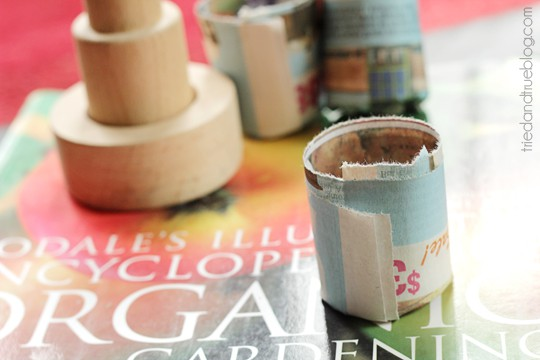 Paper Seed Pots: Done! | Tried & True