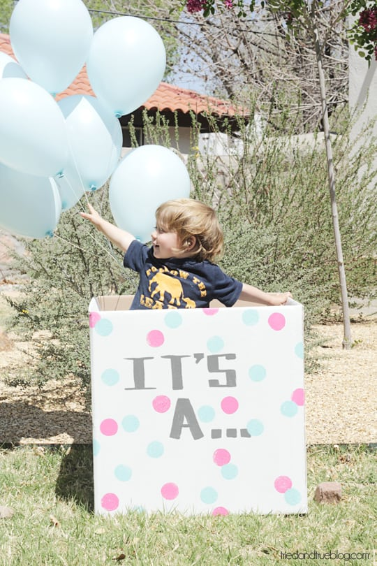 Gender Reveal Balloons: Big Brother
