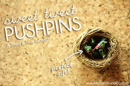 Make a quick little housewarming gift with Tried & True's Sweet Tweet Pushpins!
