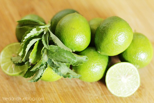 Naturally Sweetened Limeade: Two Ingredients!