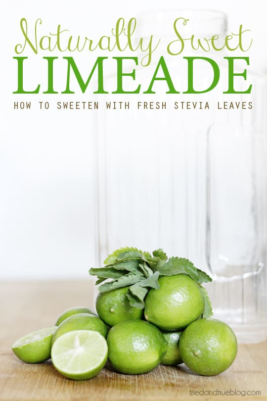 Make Naturally Sweetened Limeade with just two ingredients!