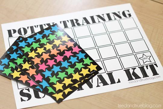 Potty Training Survival Kit: Chart