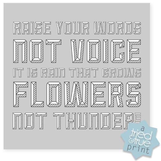 Raise Your Words - Grey