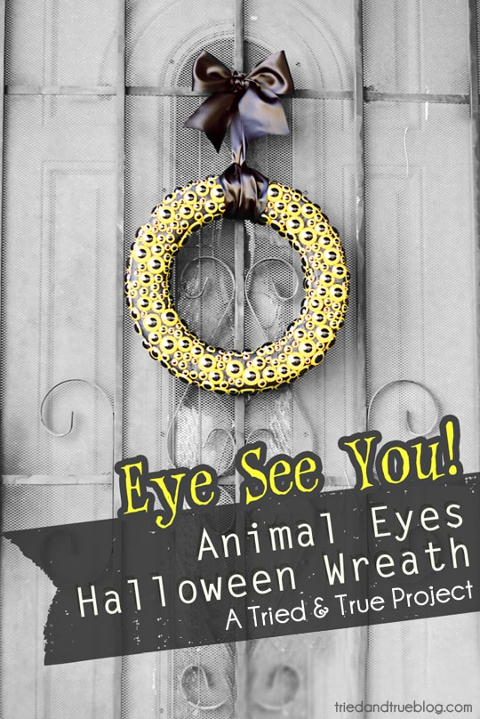 Make a spooky Animal Eyes Halloween Wreath to decorate your porch!