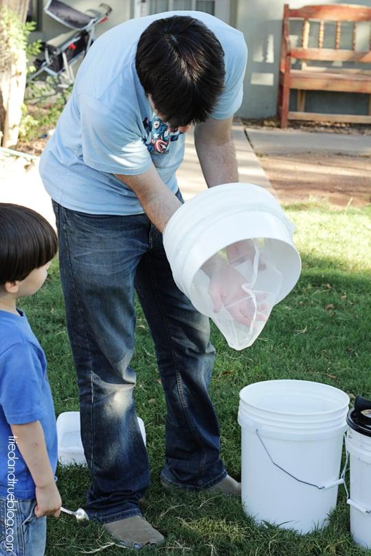 Harvesting Honey on the Cheap - Strainer