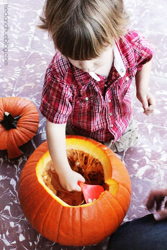 Pumpkin Carving Party - Scooping
