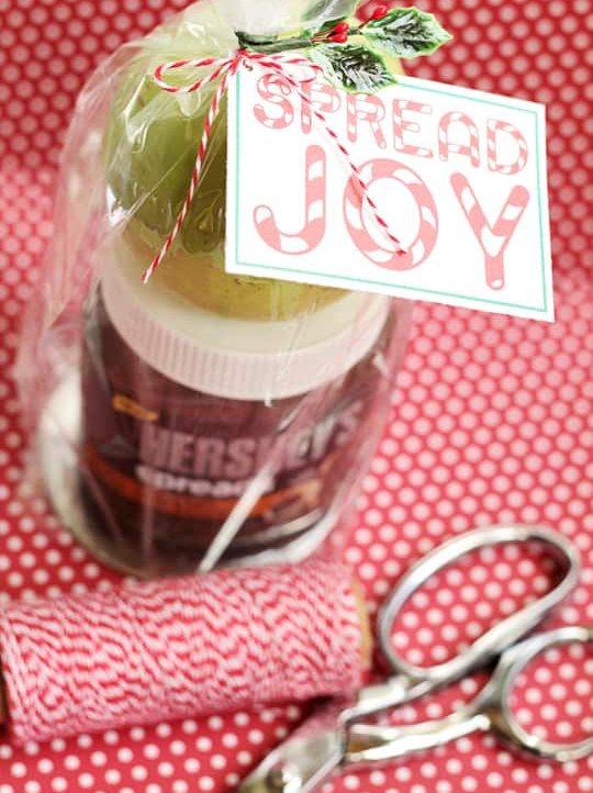 Quck and easy gift that comes together in minutes! #SpreadPossibilities #hersheysheroes