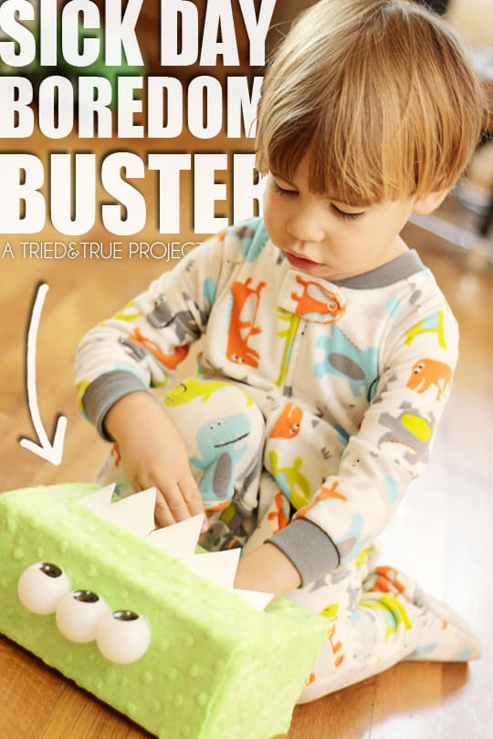 Sick Day Boredom Buster for Kids! - A Tried & True Project
