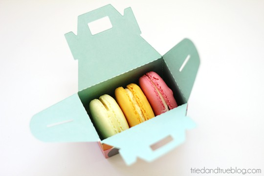 Valentine's Day Macaron Gift Box - Inside