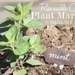 Make Your Own Reusable Plant Markers!