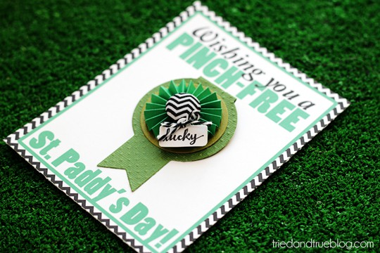 St. Paddy's Day Pinch Free Card - Perfect gift