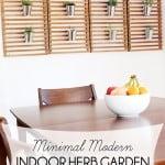 Minimal Modern Indoor Herb Garden