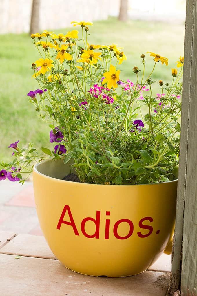 Greeting Front Porch Planter - Adios