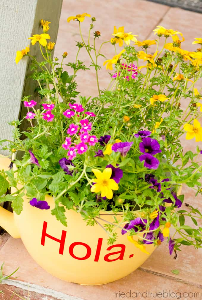 Greeting Front Porch Planter - Pretty Flowers