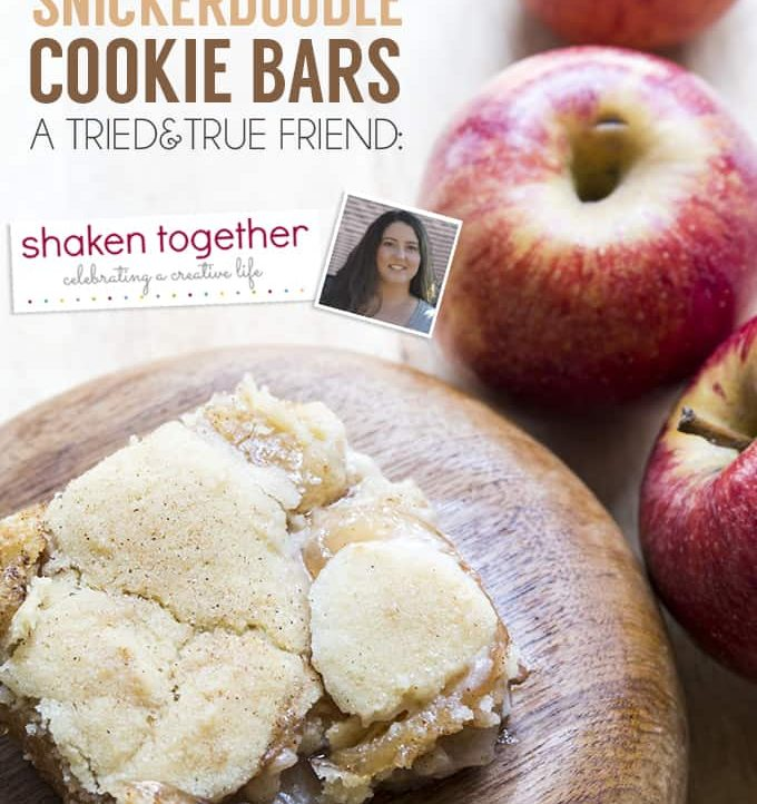Check out this amazingly easy recipe created by Shaken Together and tested by Tried and True
