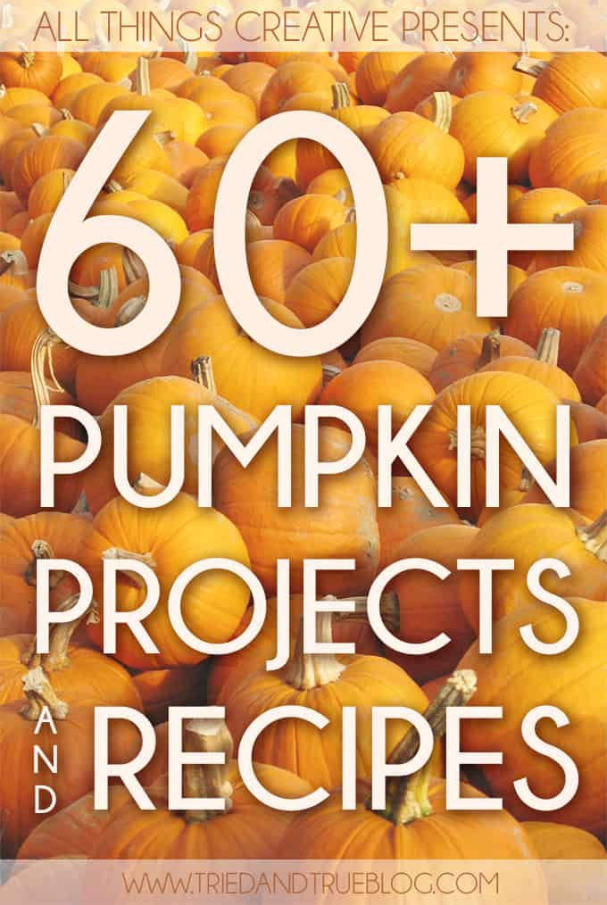 With over 60 ideas collected in one place, You're going to love these wonderful Pumpkin Projects and Recipes!