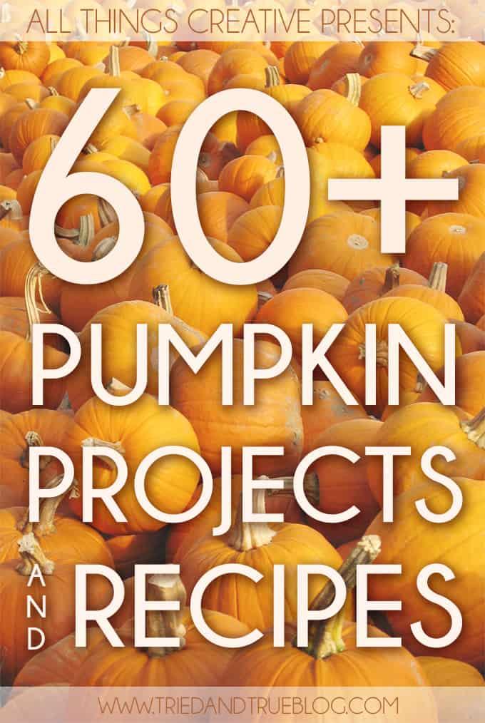 60+ Pumpkin Projects & Recipes