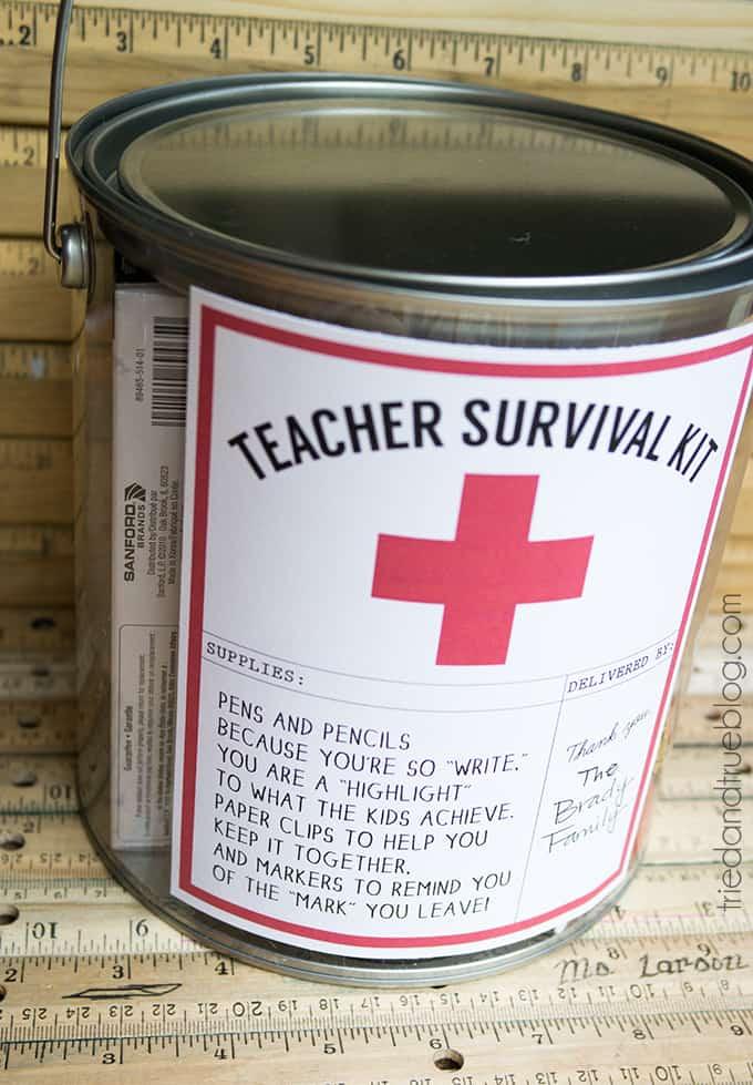 Teacher Survivial Kit - Ready to gift!