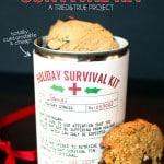 Holiday Survival Kit Easy Gift