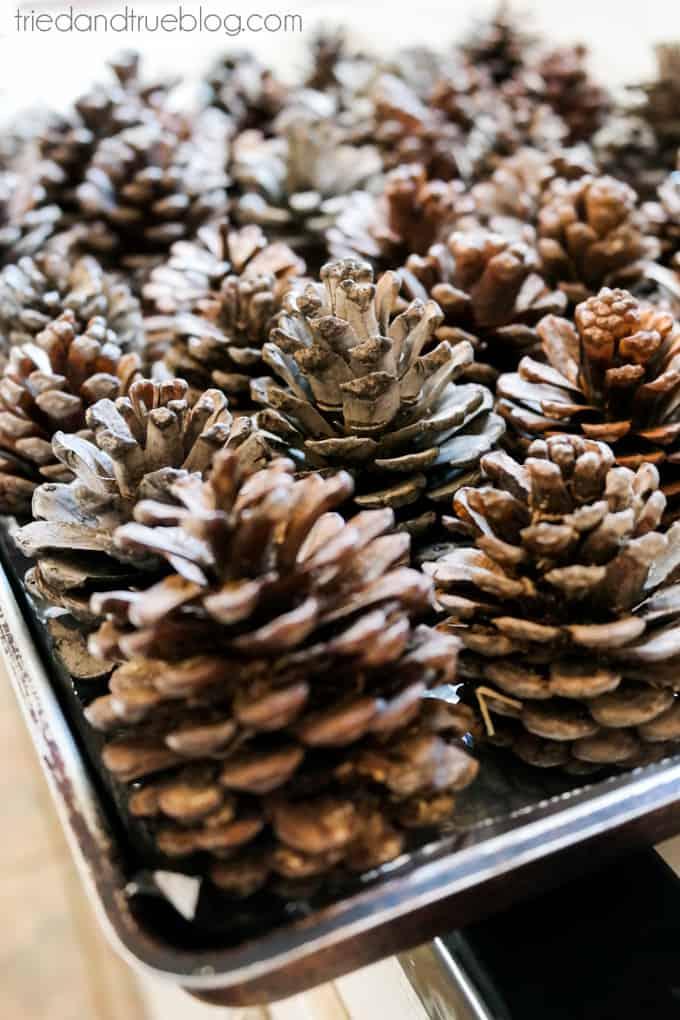 Pine Cone Christmas Wreath - Pine Cones
