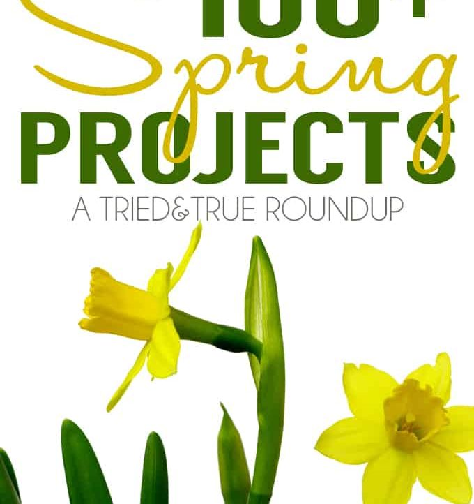 100+ Spring Projects from some of the best bloggers around!