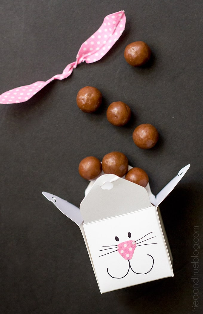 Easter Bunny Favor Boxes - Treats