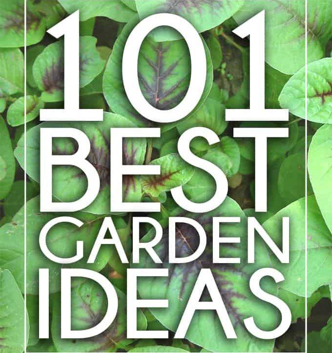 Have your best garden yet with these 101 Best Garden Ideas!