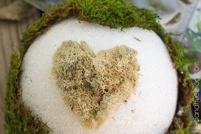 Sweetheart Moss Spheres - Heart