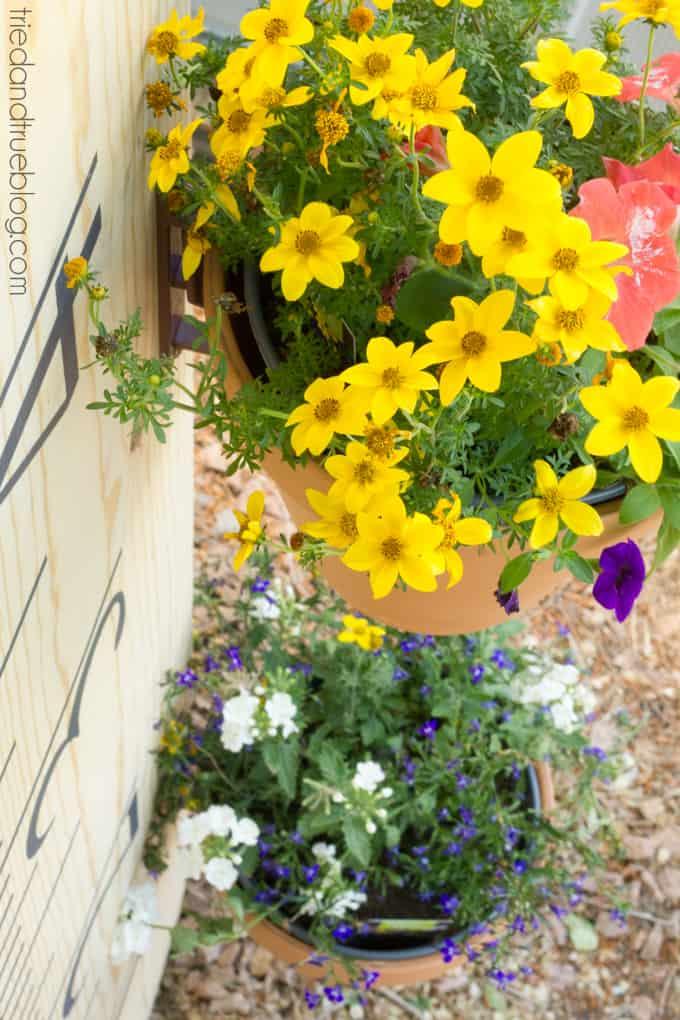 XL Ruler Planter - Flowers