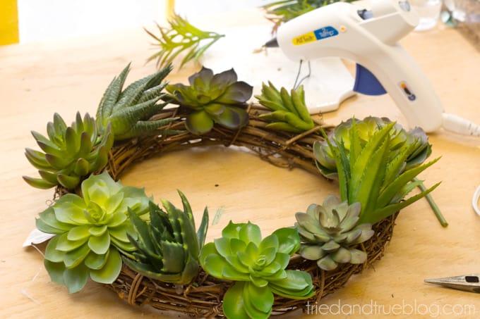 Easy Succulent Wreath - Place