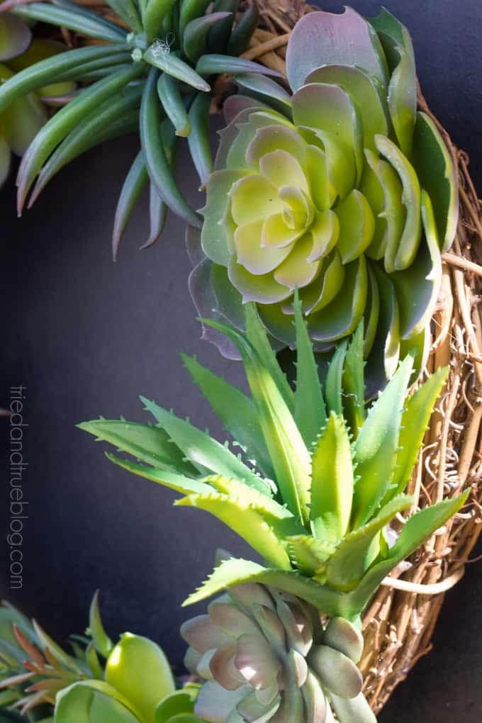 Easy Succulent Wreath - Sunshine