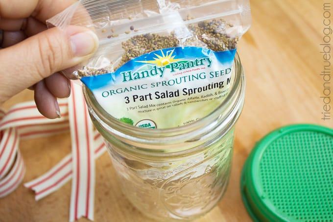Healthy Mason Jar Gift - Seeds