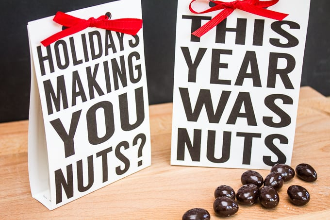 Holiday Nuts Quick & Easy Gift - Two