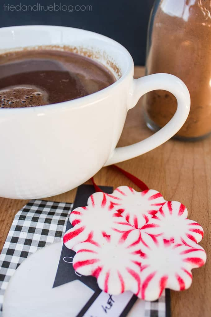 Peppermint Hot Chocolate Gift - Hot Chocolate