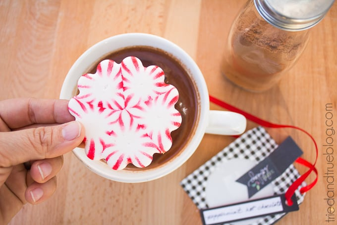 Peppermint Hot Chocolate Gift - Add the mint!