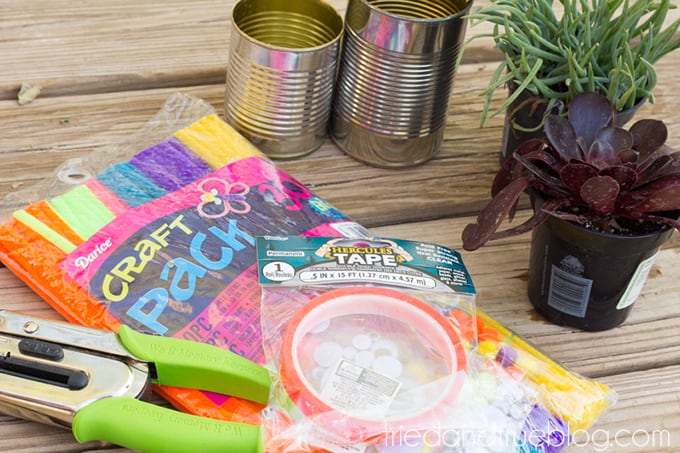 Earth Day Recycled Tin Can Planters - Supplies