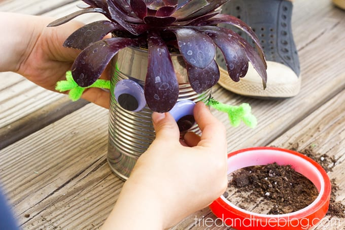 Earth Day Recycled Tin Can Planters - Eyes