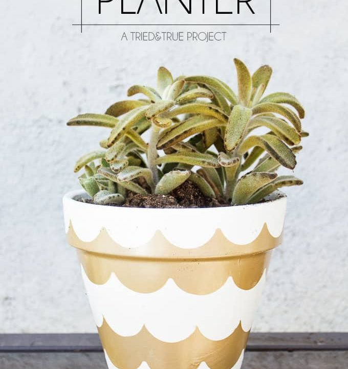 Make this Gold Scalloped Planter with just spray paint and tape! So many different ways to customize!