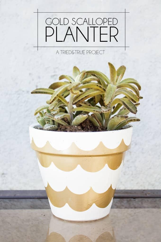 Gold Scalloped Planter