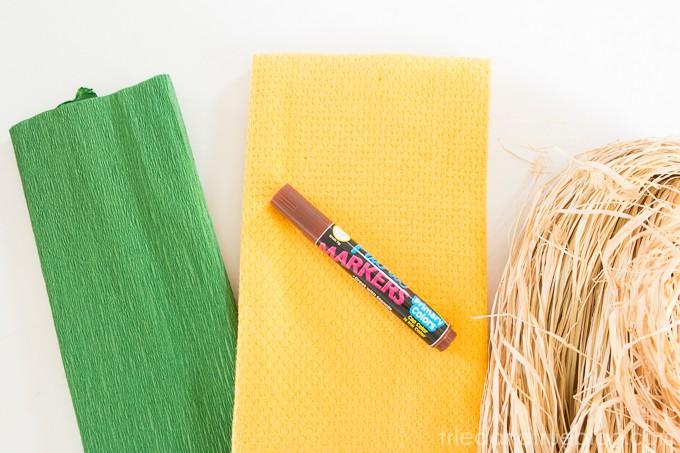 Creative Pineapple Hostess Gift - Supplies