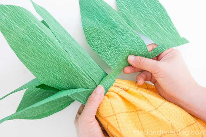 Creative Pineapple Hostess Gift - Wrap