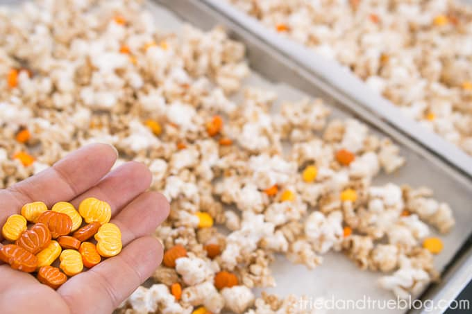 Healthy Pumpkin Spice Popcorn - Popcorn